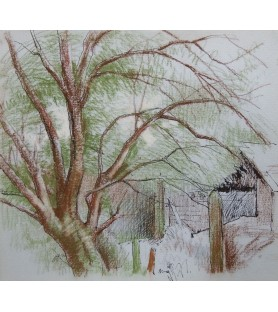 Tree and Outbuildings by...